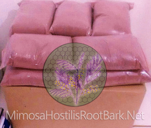 Post Packing Process | Mimosa Hostilis